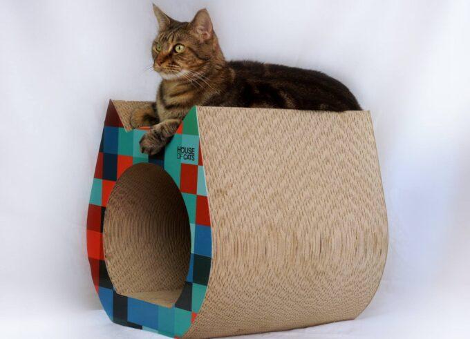 Cat Cube to drapak i domek dla kotka jednocześnie
