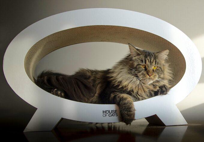 drapak tekturowy dla kota elipso