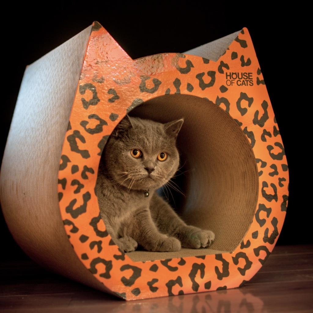 Drapak dla kotów Phanter